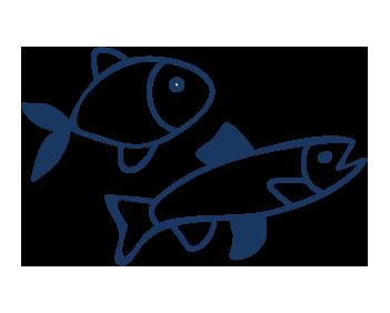 aquaculture industry