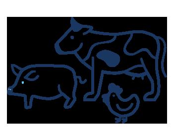 livestock industry